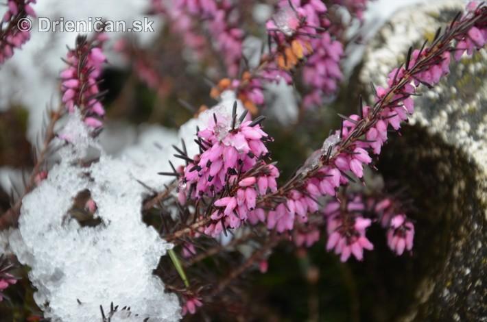 sneh v marci_02