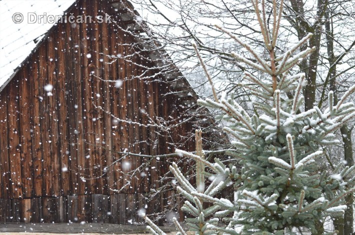 sneh v marci_08