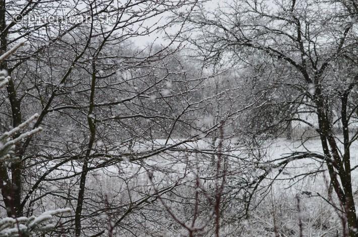 sneh v marci_10