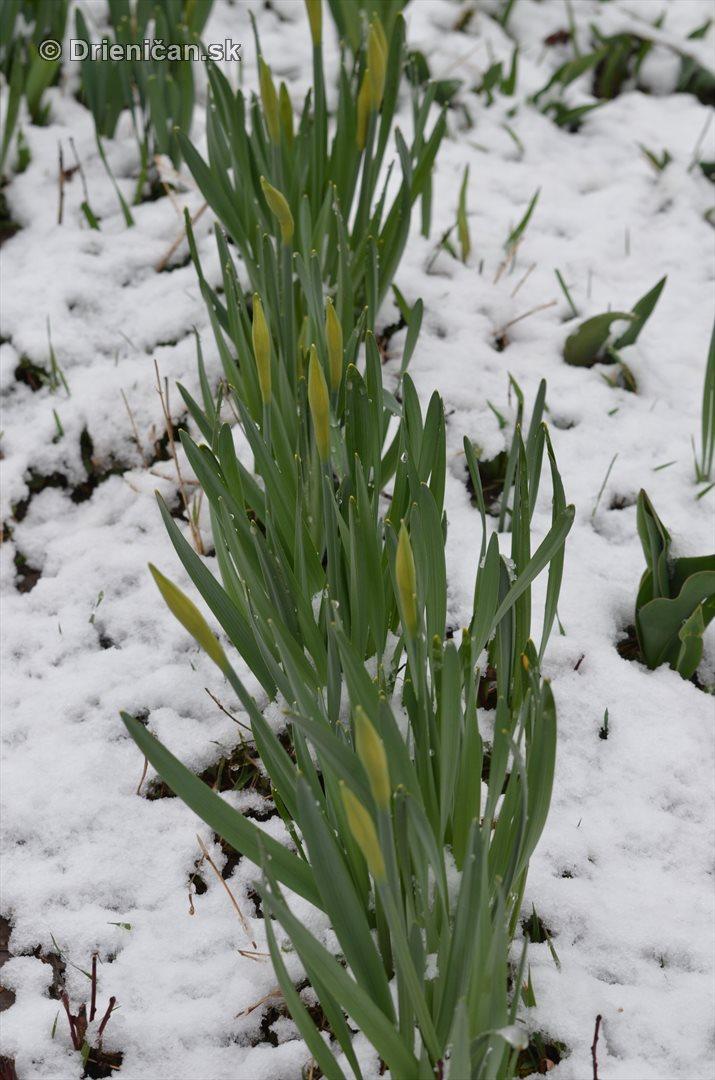 sneh v marci_16