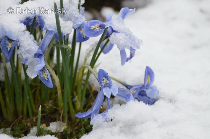 sneh v marci_18