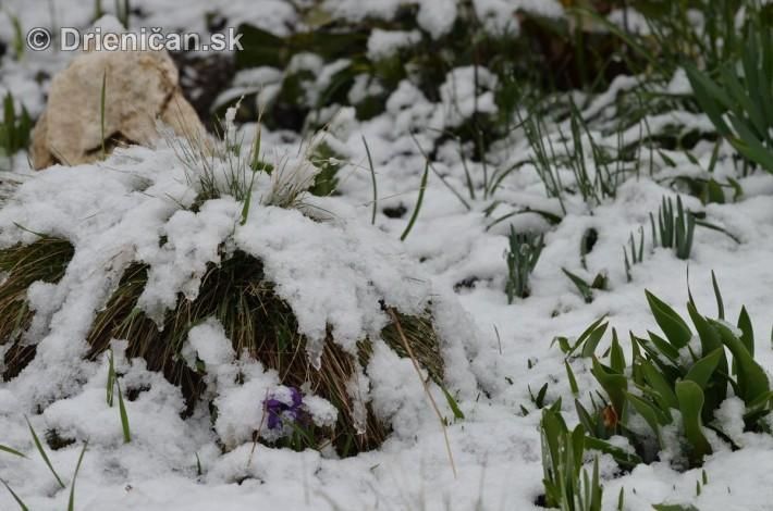sneh v marci_21