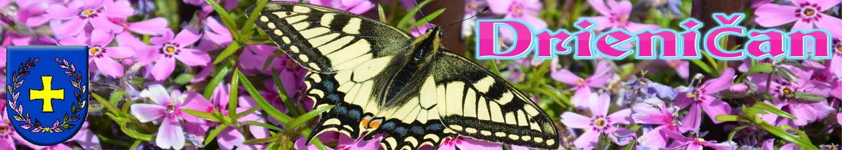 Logo č.10 ,motýľ v záhradke...