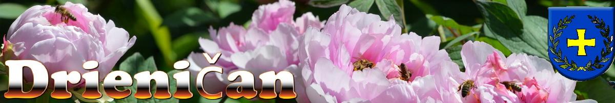 Logo č.9 Včely opeľujúce kvety