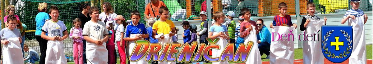 Logo č.14 ,Deň detí Drienica.