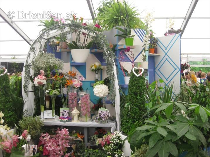 Bloom Ireland Garden Festival_54