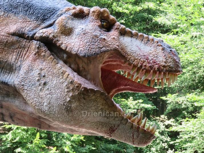 DinoPark Kosice_33