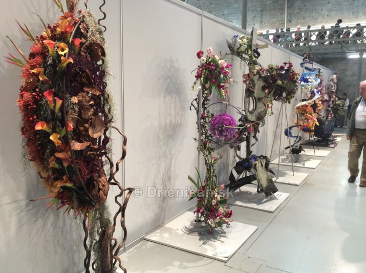 World Flower Show WAFA_05