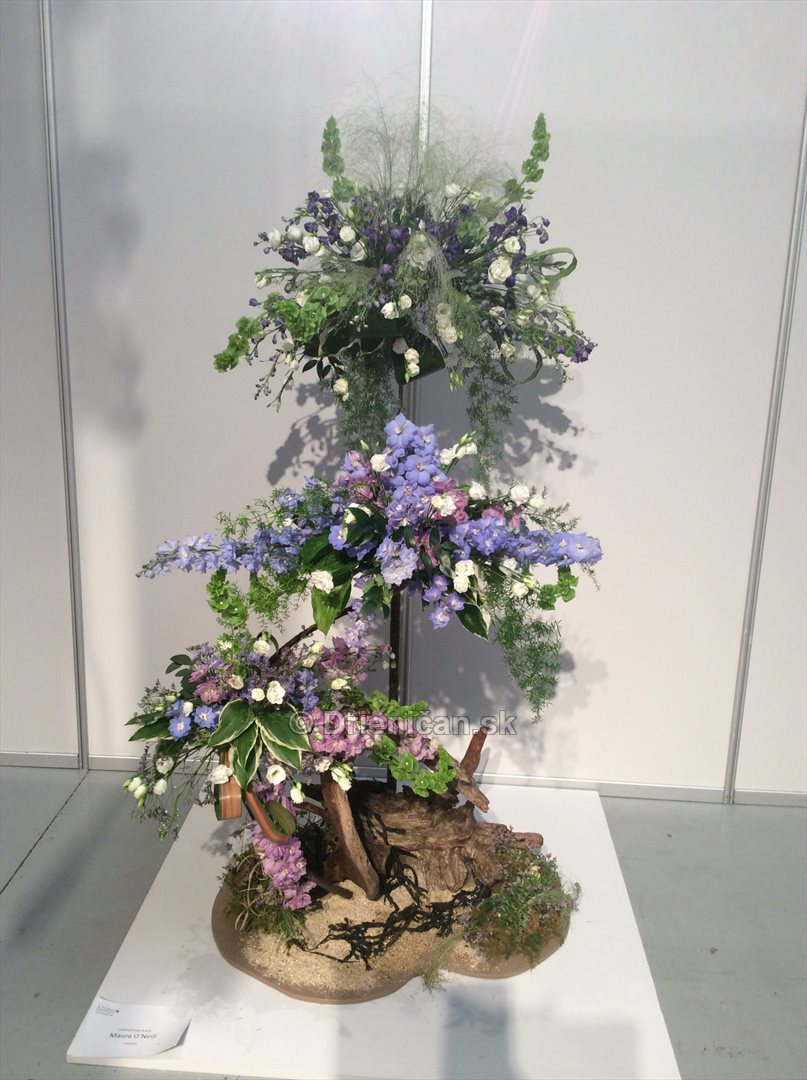 World Flower Show WAFA_10