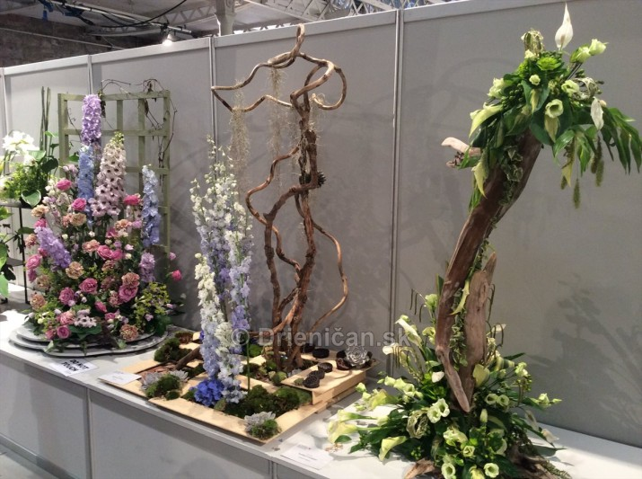 World Flower Show WAFA_37