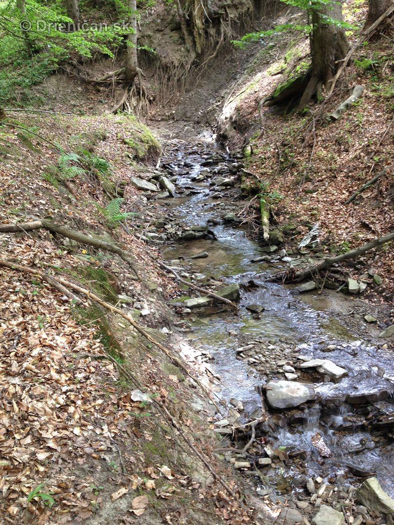 V tichom lese potok tecie_10