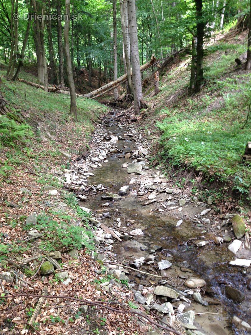 V tichom lese potok tecie_11