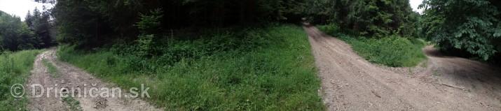 V tichom lese potok tecie_19