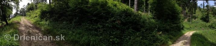 V tichom lese potok tecie_20