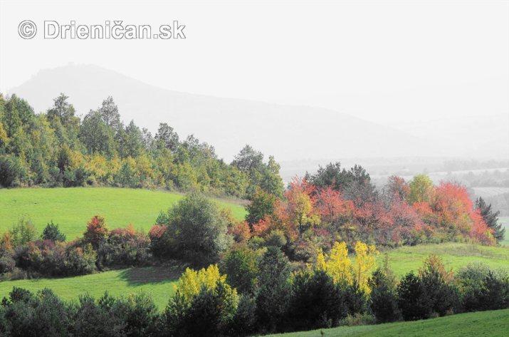Drienica v jeseni foto_05