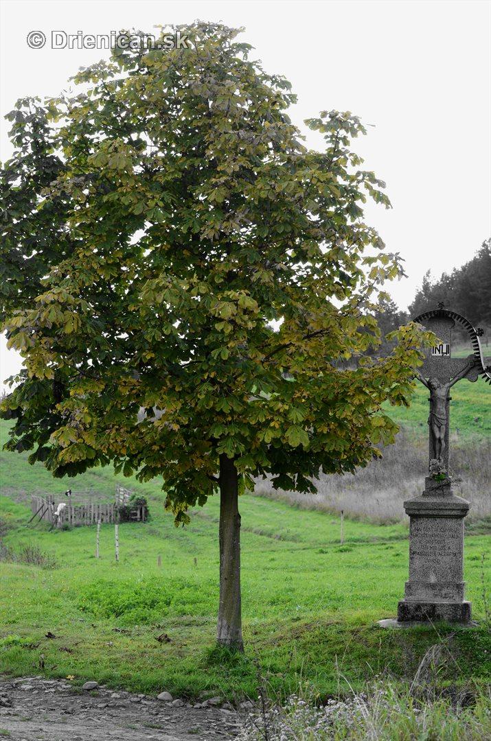 Drienica v jeseni foto_06