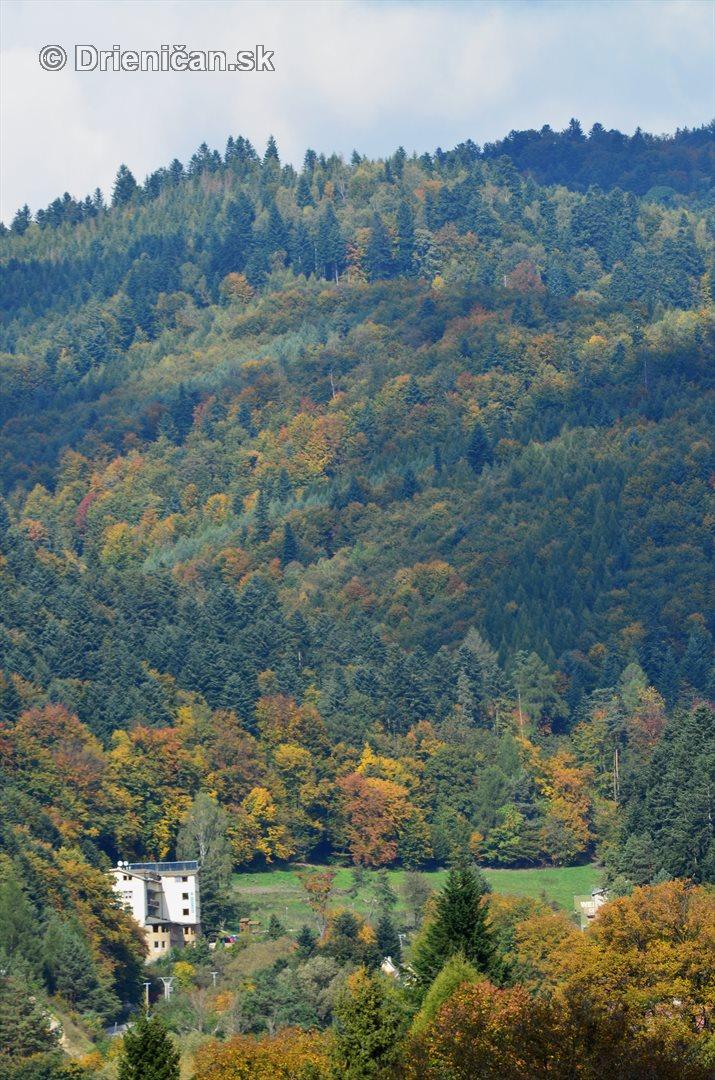 Drienica v jeseni foto_07