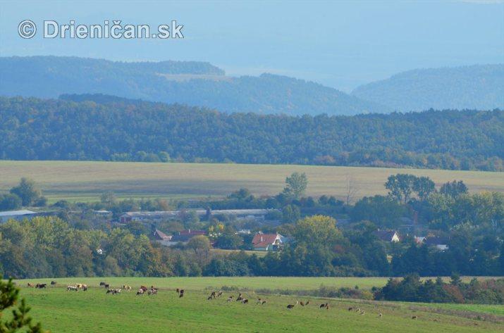 Drienica v jeseni foto_13