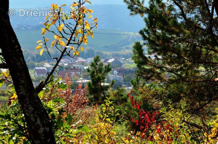 Drienica v jeseni foto_19