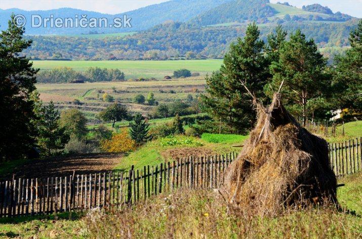 Drienica v jeseni foto_22