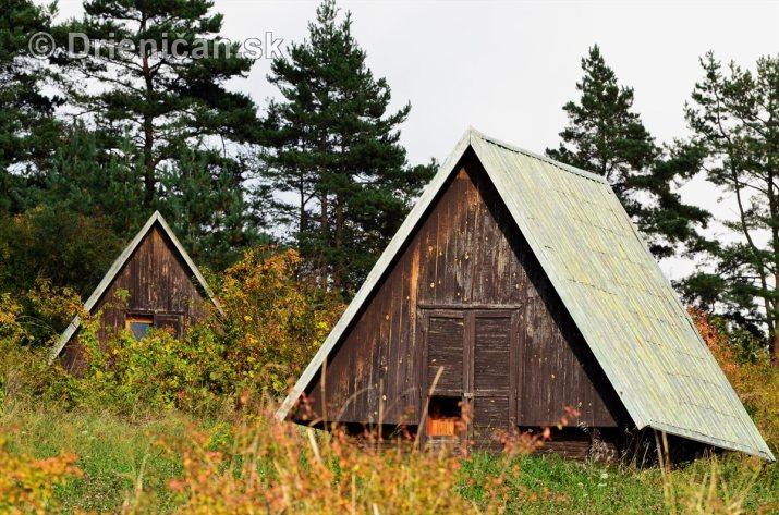 Drienica v jeseni foto_34