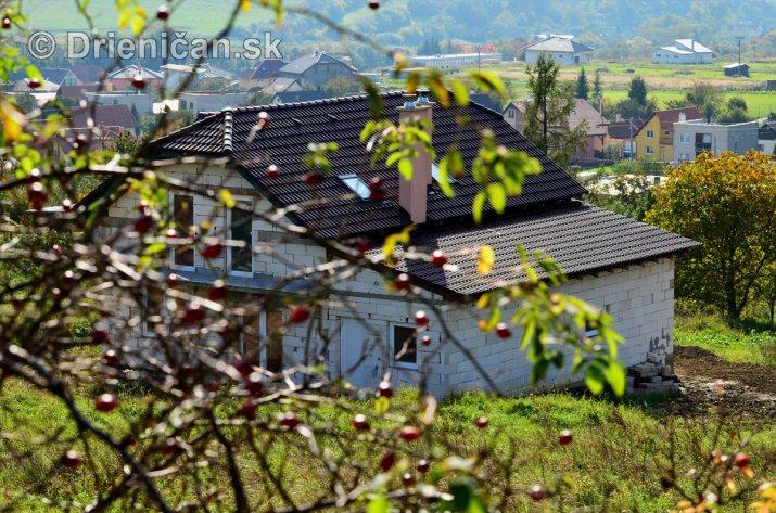 Drienica v jeseni foto_35