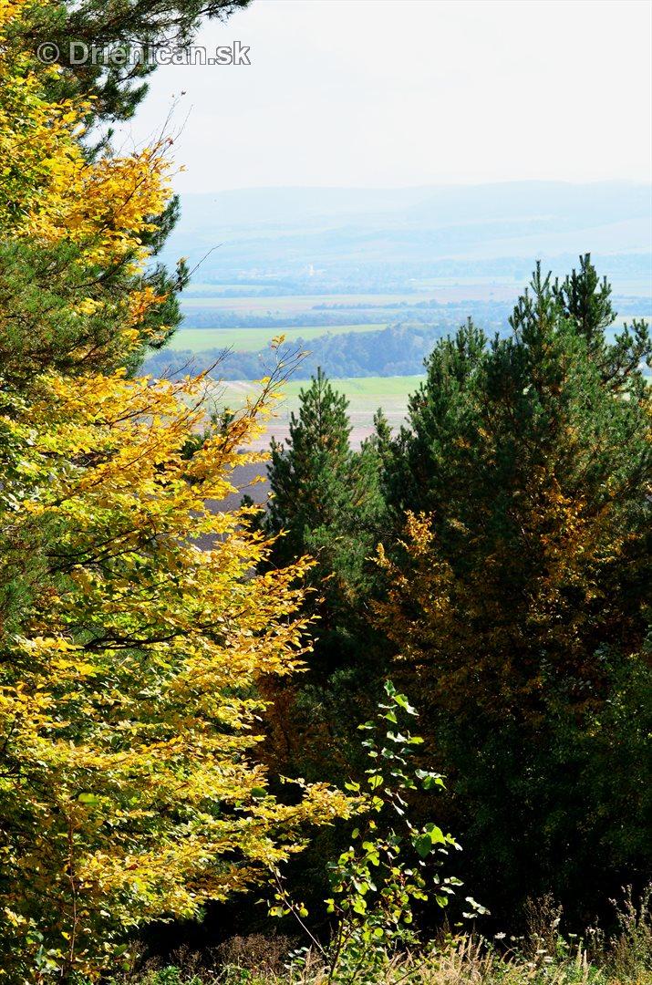 Drienica v jeseni foto_40