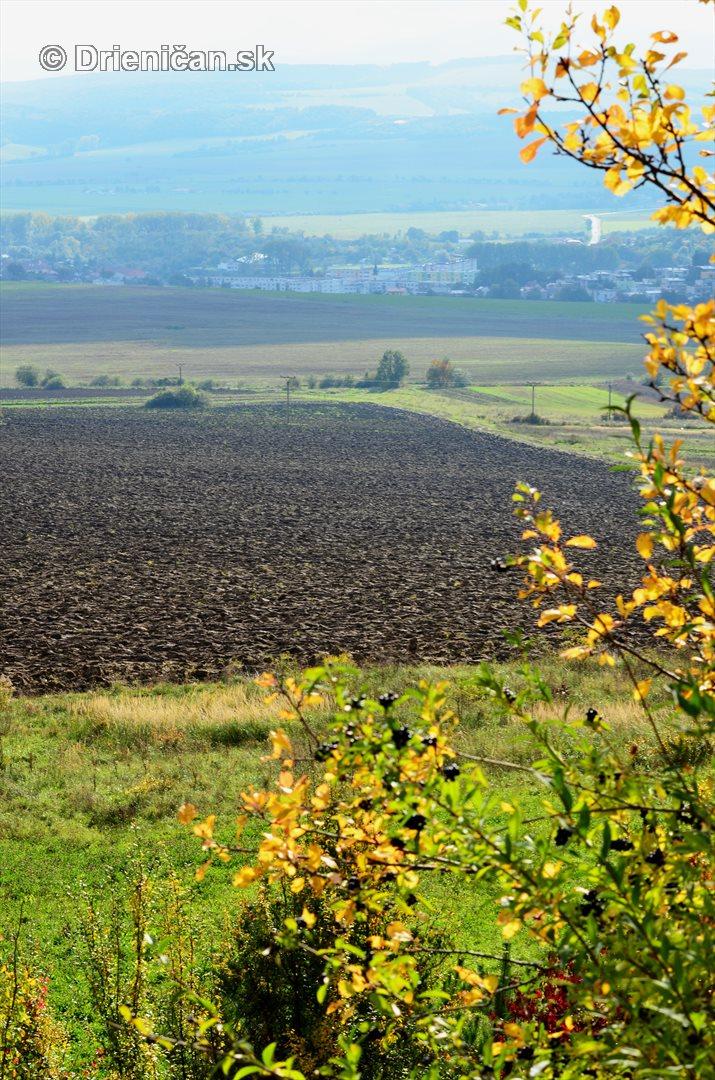Drienica v jeseni foto_49