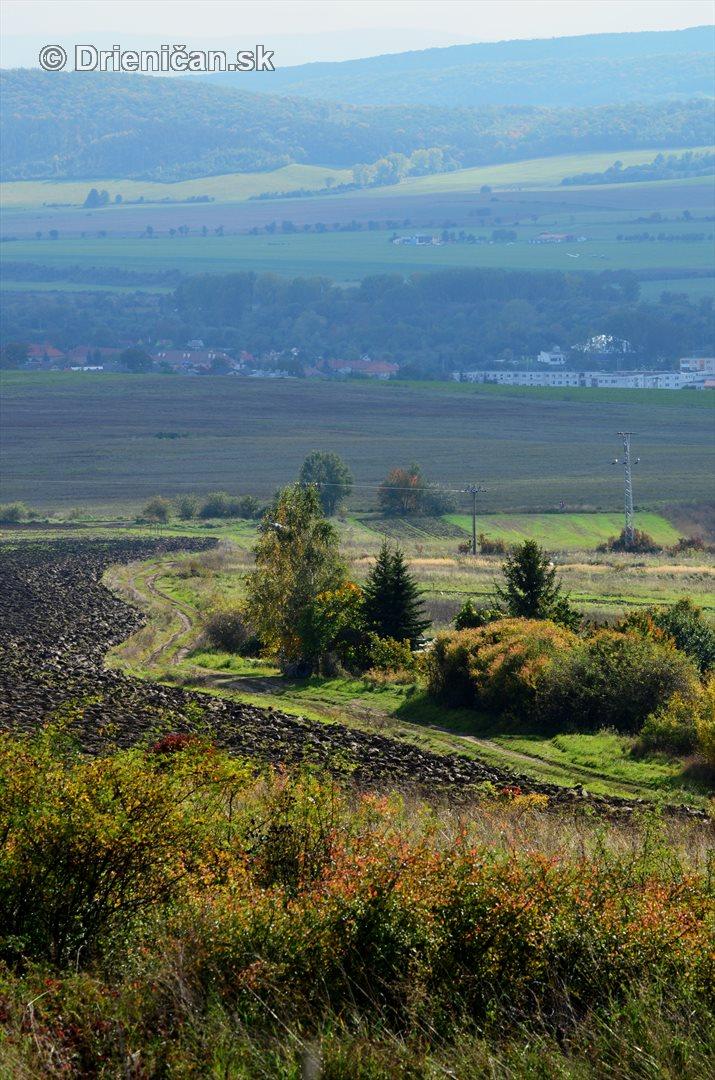 Drienica v jeseni foto_56