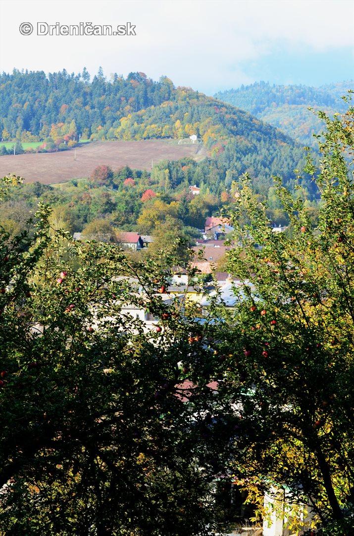 Drienica v jeseni foto_66