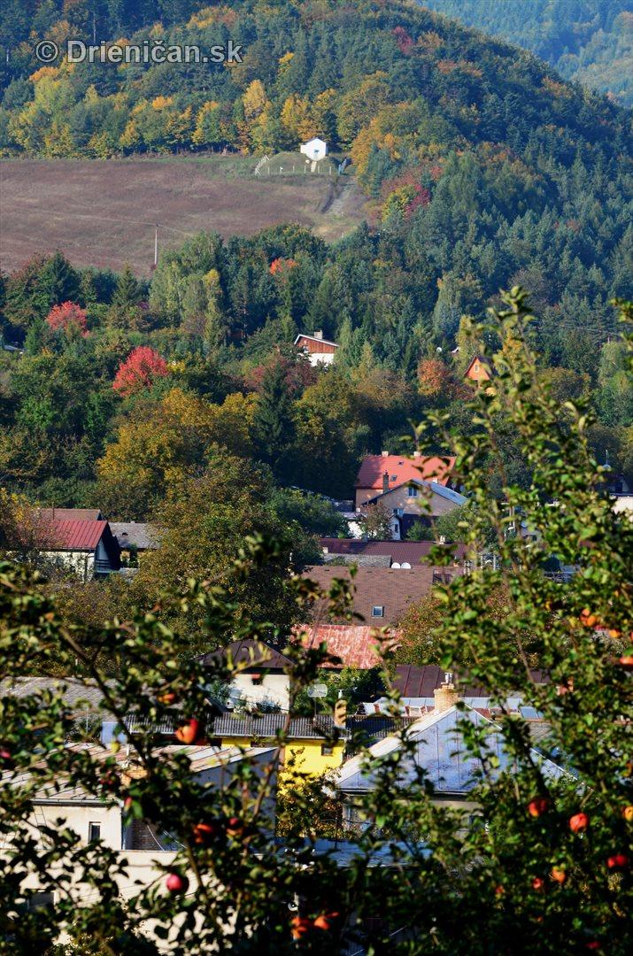 Drienica v jeseni foto_67