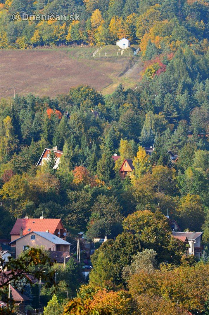 Drienica v jeseni foto_70