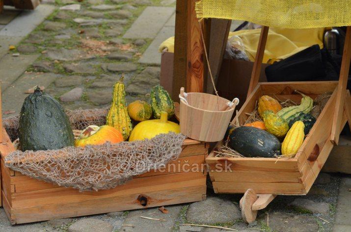 Jesenny kulturny festival v parku pri fontane _12