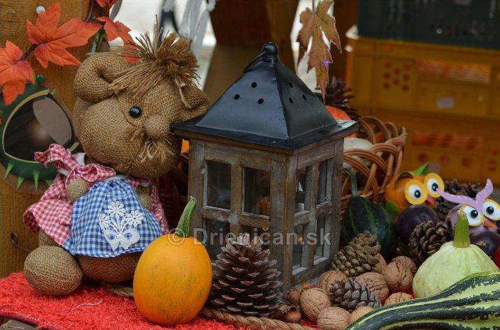 Jesenny kulturny festival v parku pri fontane _14