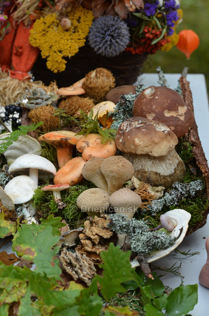 Jesenny kulturny festival v parku pri fontane _15
