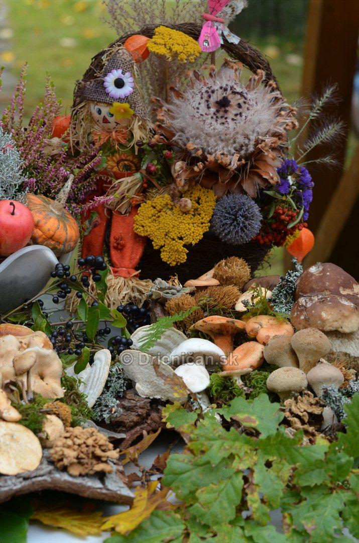 Jesenny kulturny festival v parku pri fontane _16