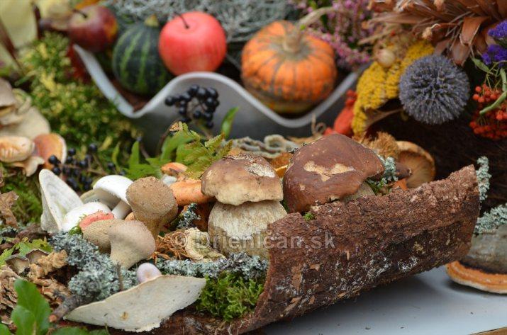 Jesenny kulturny festival v parku pri fontane _17