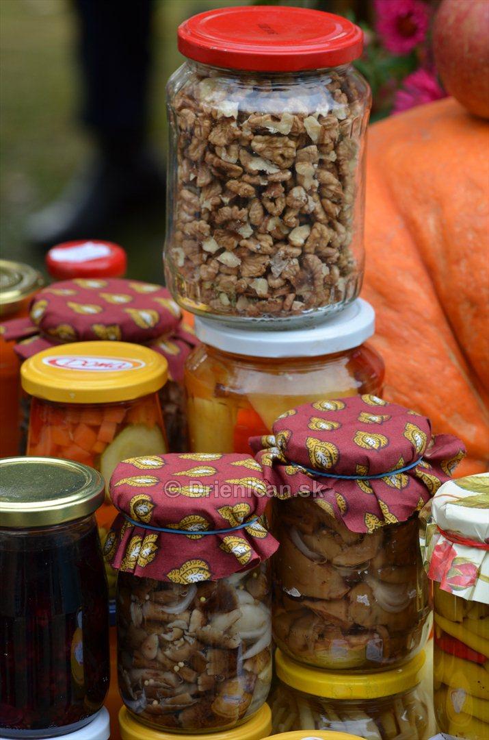 Jesenny kulturny festival v parku pri fontane _18