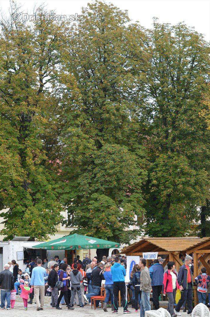 Jesenny kulturny festival v parku pri fontane _22