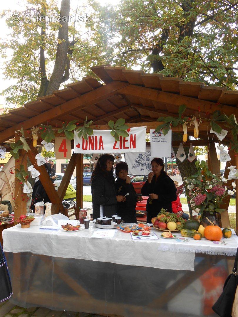 Jesenny kulturny festival v parku pri fontane _41