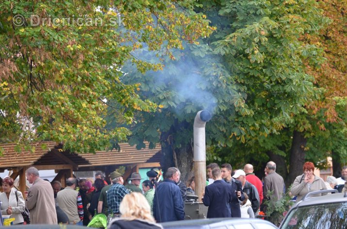Jesenny kulturny festival v parku pri fontane _56