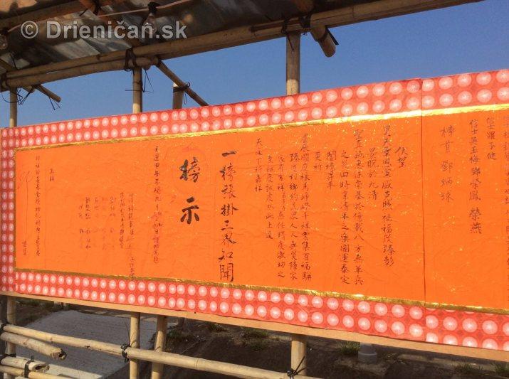 Hong Kong Ha Tsuen San Wai Yuen Long_48