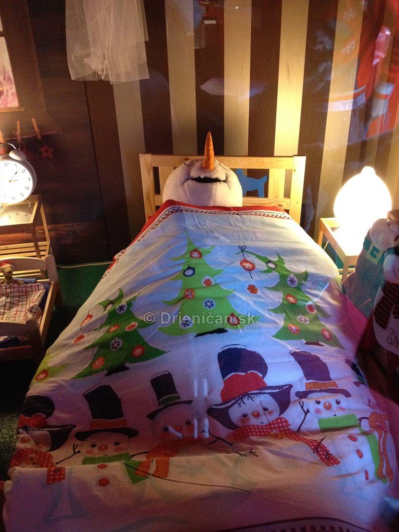 Doma u Santa Clausa_07