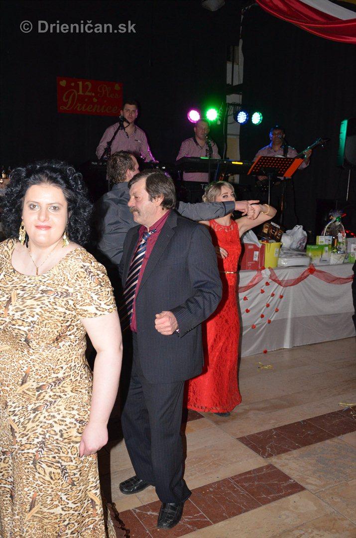 12 ples obce Drienica fotky_2