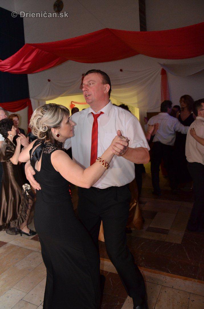 12 ples obce Drienica foto_02