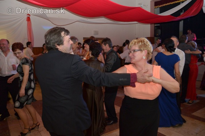 12 ples obce Drienica foto_10
