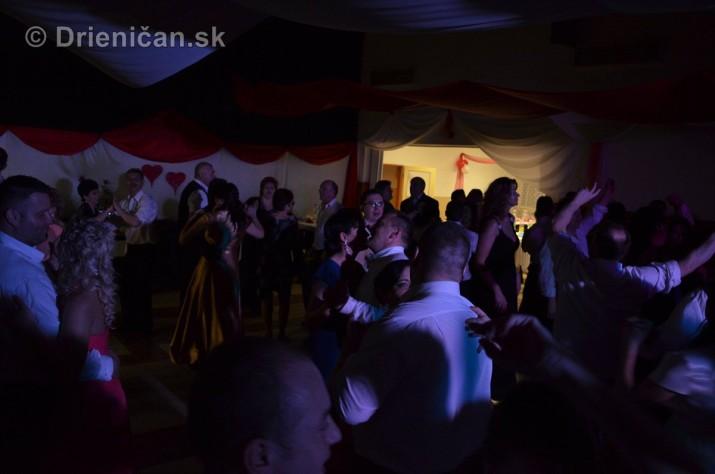 12 ples obce Drienica foto_11