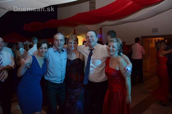 12 ples obce Drienica foto_12