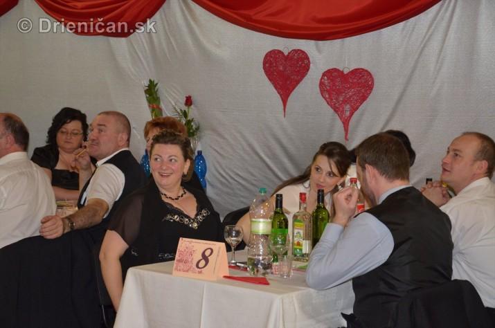 12 ples obce Drienica foto_22