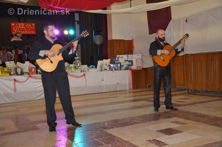 12 ples obce Drienica_06